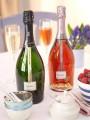 antropoti-freixenet-Elyssia-premium_wines